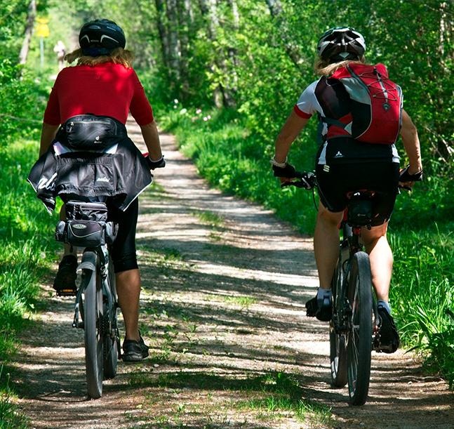 La alimentación encima de la bicicleta
